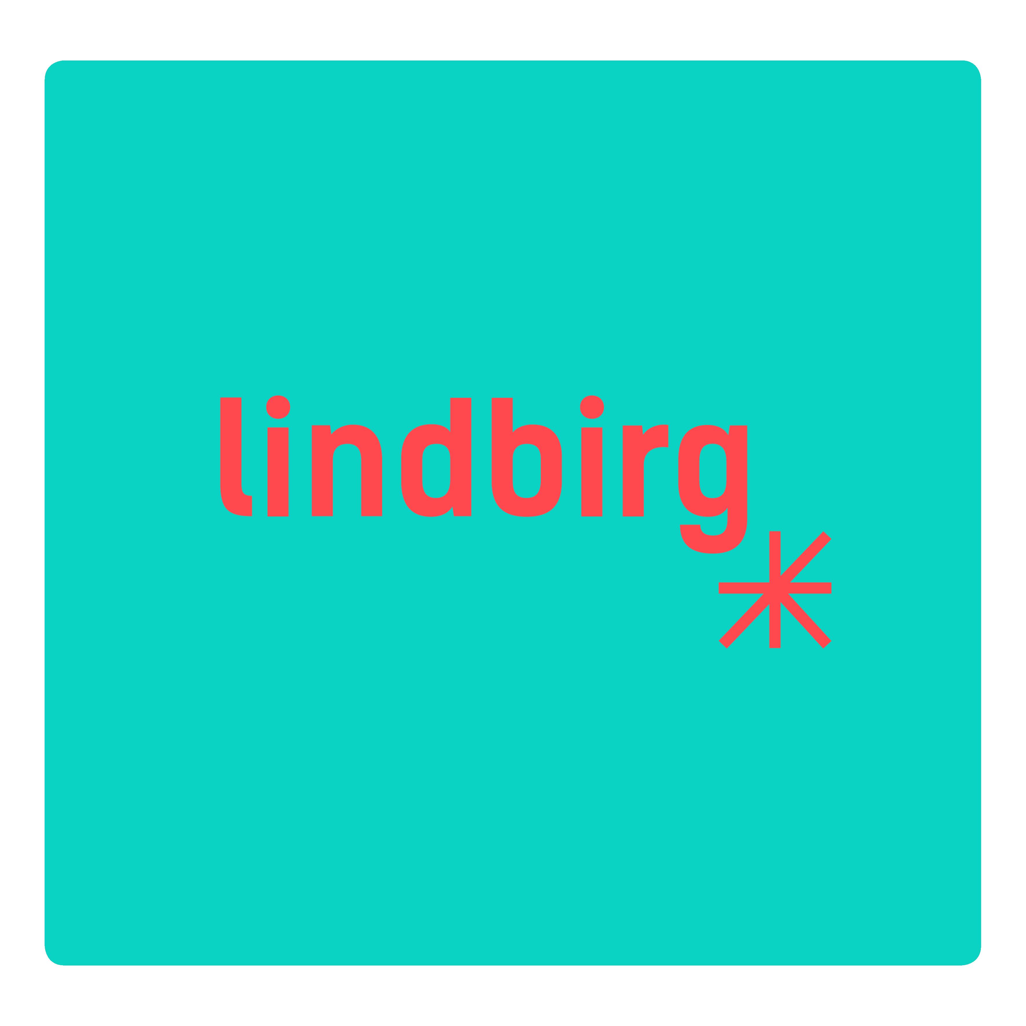 lindbirg-logo